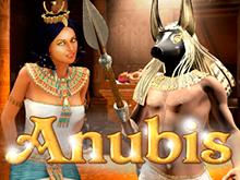 Anubix