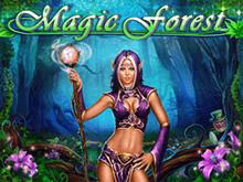 Азартная шалость  со лучшими коэффициентами Magic Forest